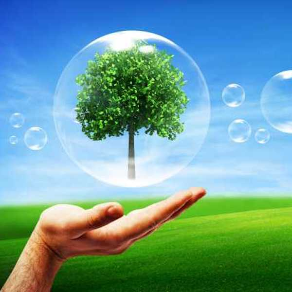 Clean Pro Environmentaly Friendly Cleaning Services